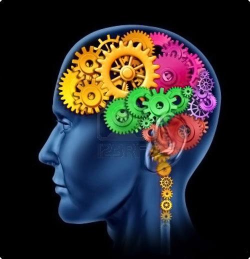 برای تقویت مغز و حافظه این نوشیدنی ها را بنوشید