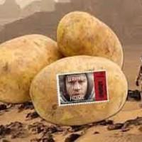 مریخ و کاشت سیب زمینی در آن