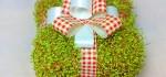 انواع مدل های جدید تزیین سبزه برای عید نوروز ۹۵