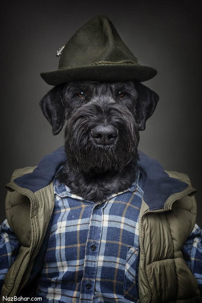 تصاویر زیبا و خلاقانه از سگ های در لباس انسانها