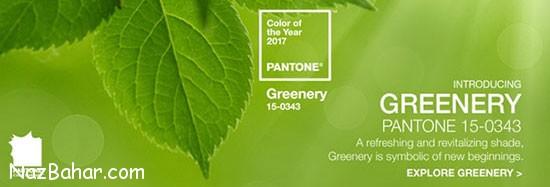 رنگ سال 2017 توسط موسسه پانتون اعلام شد